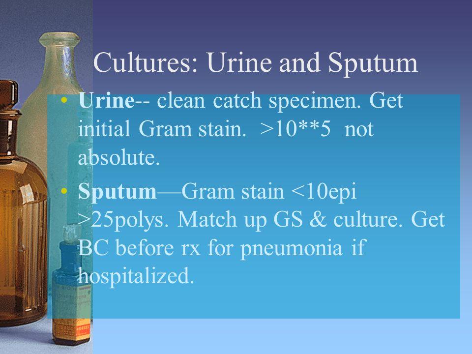 Cultures: Urine and Sputum Urine-- clean catch specimen. Get initial Gram stain. >10**5 not absolute. Sputum—Gram stain 25polys. Match up GS & culture