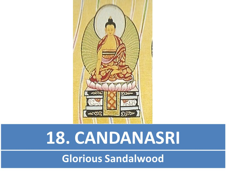 18. CANDANASRI Glorious Sandalwood