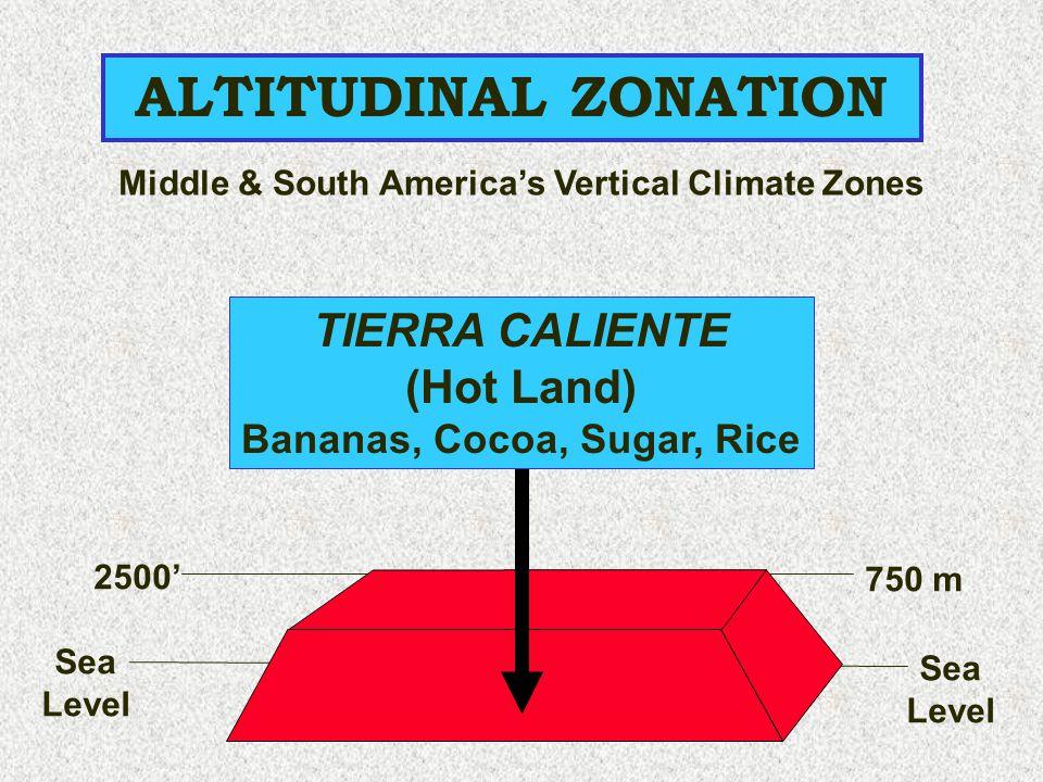 ALTITUDINAL ZONATION Sea Level Sea Level 2500' 750 m TIERRA CALIENTE (Hot Land) Bananas, Cocoa, Sugar, Rice Middle & South America's Vertical Climate