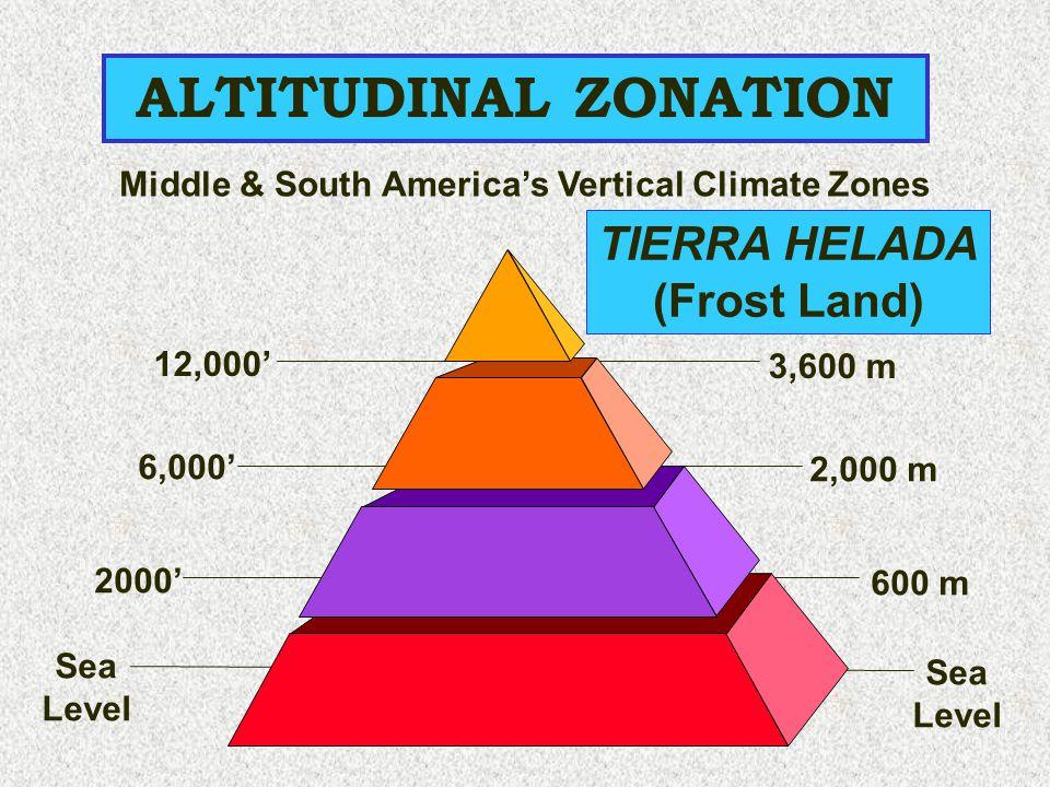 12,000' 3,600 m ALTITUDINAL ZONATION Sea Level 6,000' 2000' 2,000 m 600 m Sea Level TIERRA HELADA (Frost Land) Middle & South America's Vertical Clima