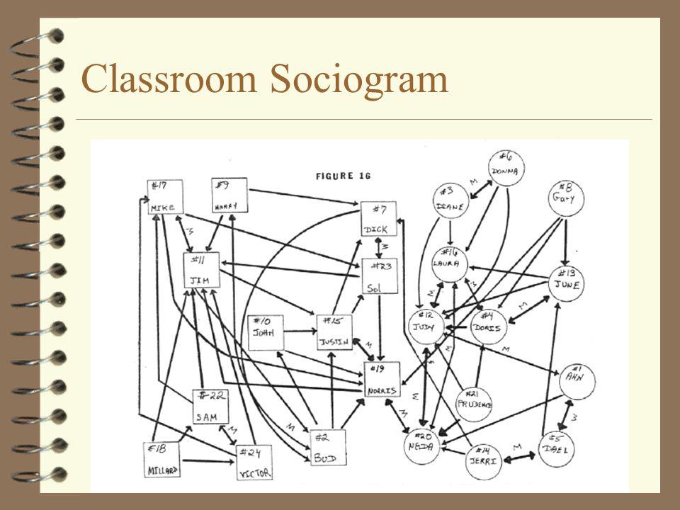 Classroom Sociogram