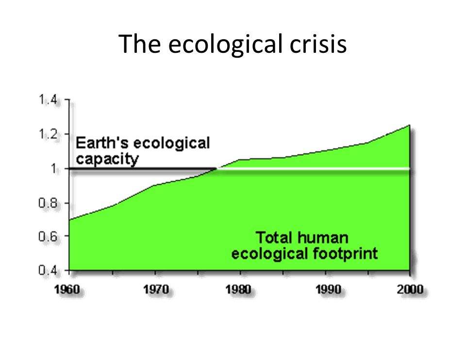 The ecological crisis