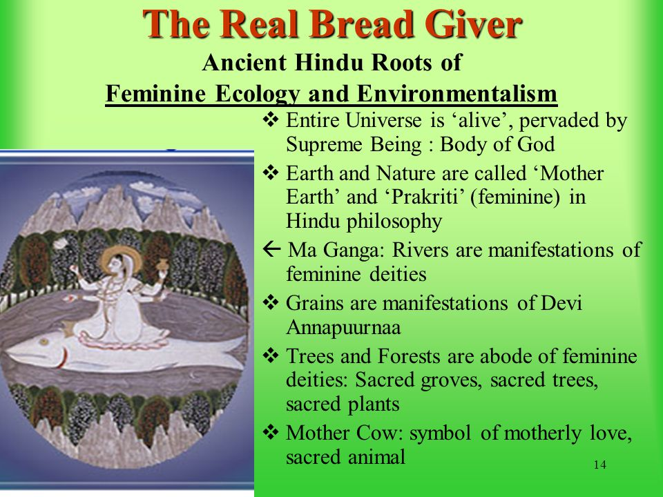 14 The Real Bread Giver The Real Bread Giver Ancient Hindu Roots of Feminine Ecology and Environmentalism  Entire Universe is 'alive', pervaded by Supreme Being : Body of God  Earth and Nature are called 'Mother Earth' and 'Prakriti' (feminine) in Hindu philosophy  Ma Ganga: Rivers are manifestations of feminine deities  Grains are manifestations of Devi Annapuurnaa  Trees and Forests are abode of feminine deities: Sacred groves, sacred trees, sacred plants  Mother Cow: symbol of motherly love, sacred animal