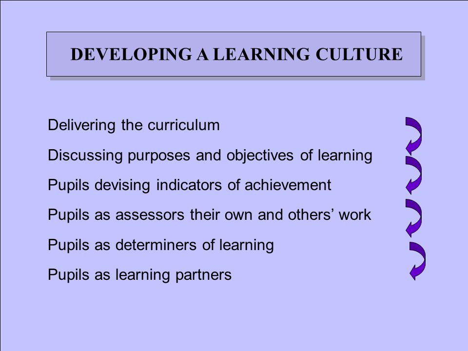 Delivering the curriculum Discussing purposes and objectives of learning Pupils devising indicators of achievement Pupils as assessors their own and others' work Pupils as determiners of learning Pupils as learning partners DEVELOPING A LEARNING CULTURE