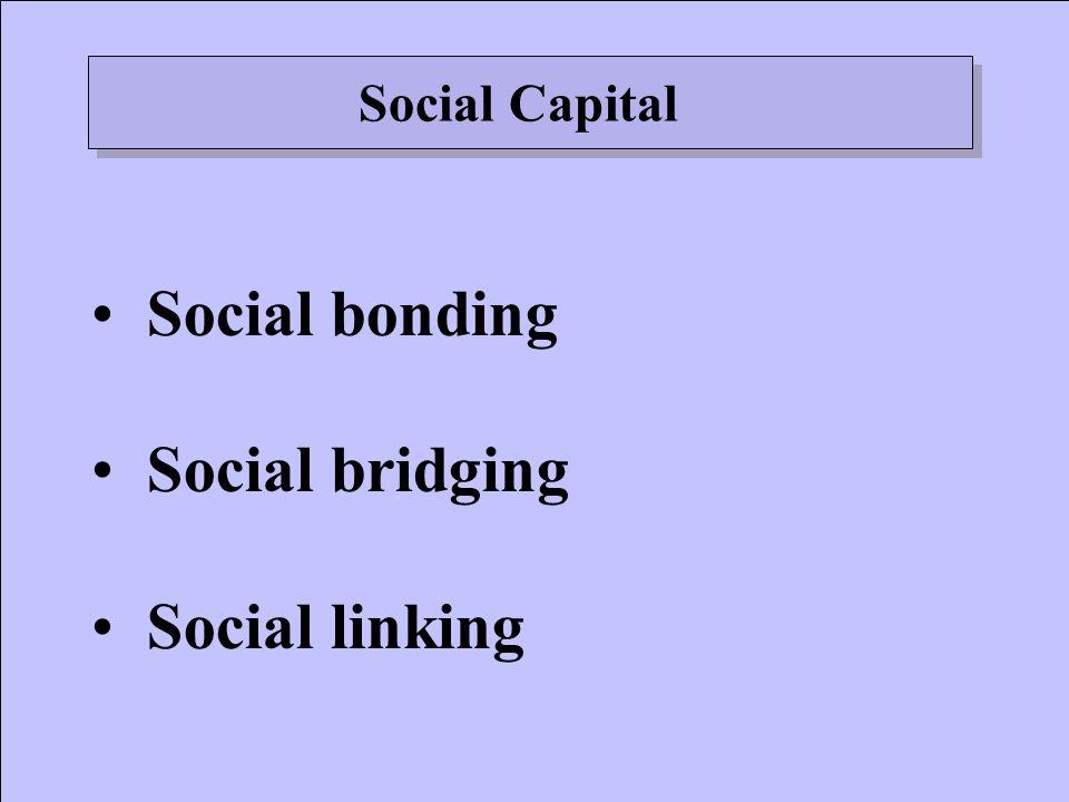 Social bonding Social bridging Social linking Social Capital