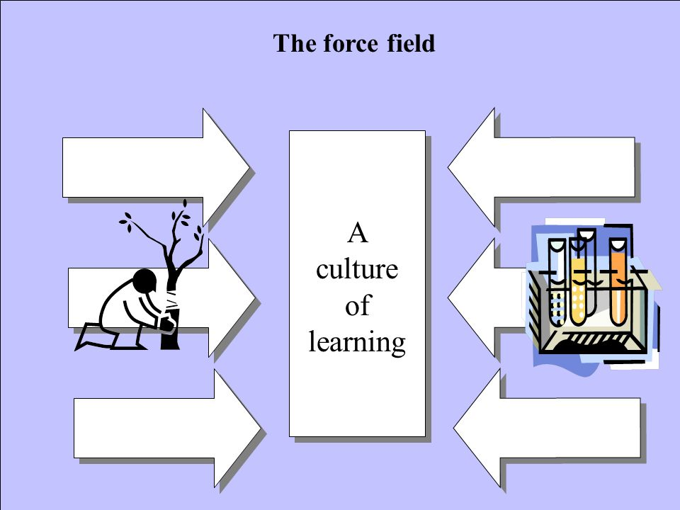 The force field A culture of learning
