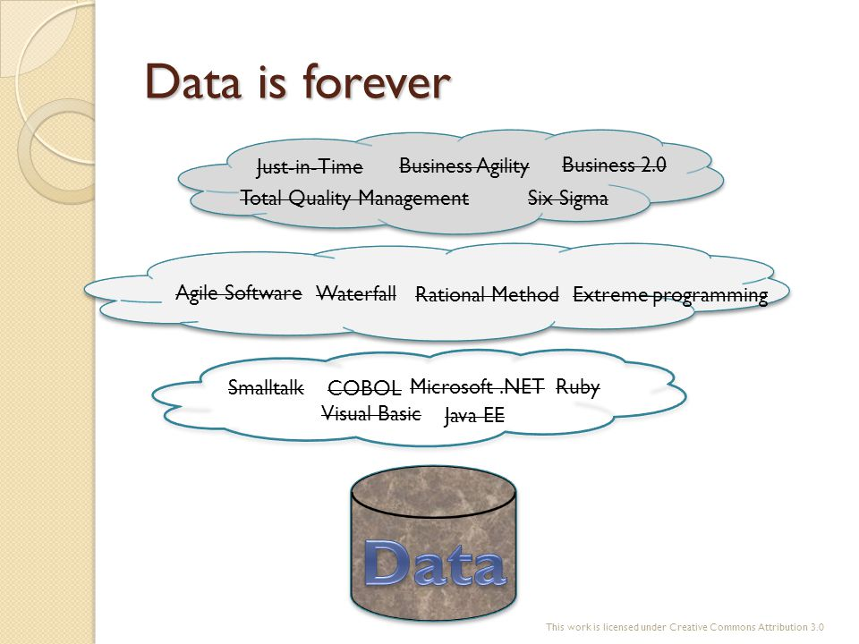 Data is forever COBOL Visual Basic Java EE RubyMicrosoft.NET Smalltalk Just-in-Time Total Quality ManagementSix Sigma Business Agility Business 2.0 Wa