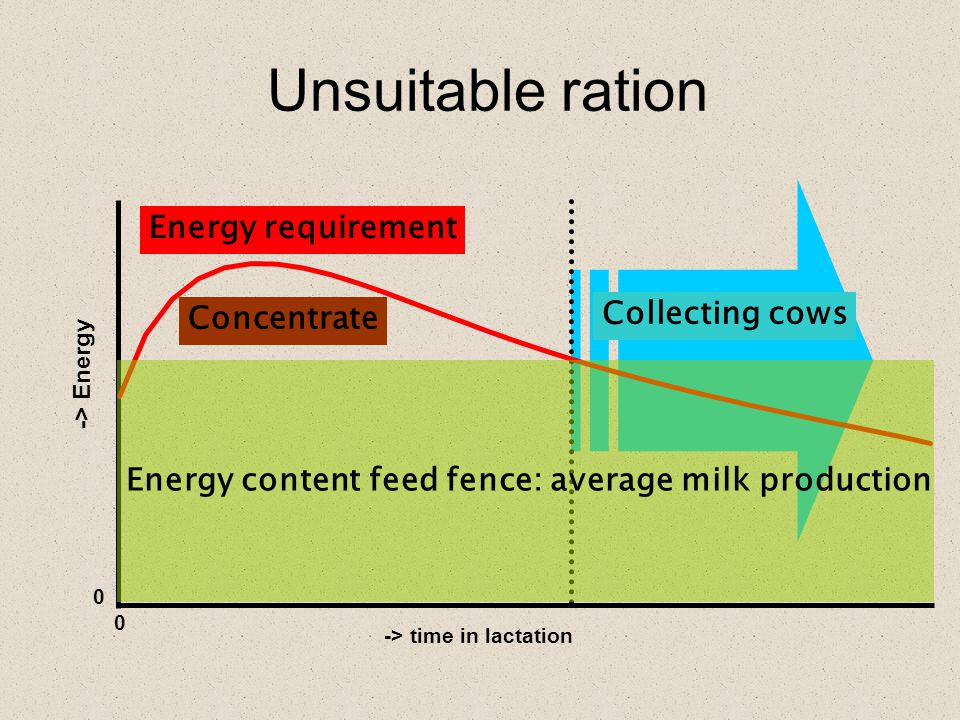 Collecting cows Unsuitable ration -> time in lactation 0 0 -> Energy Energy requirement Energy content feed fence: average milk production Concentrate