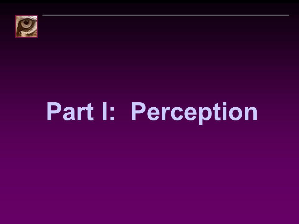Part I: Perception