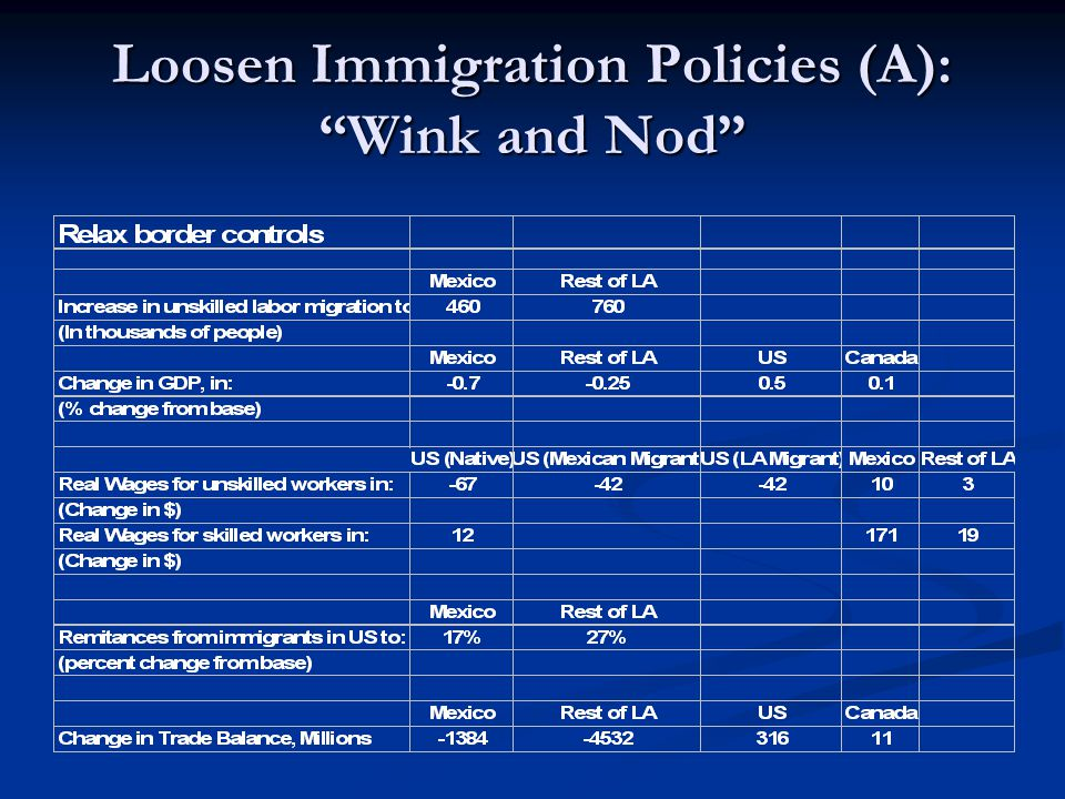 Loosen Immigration Policies (A): Wink and Nod