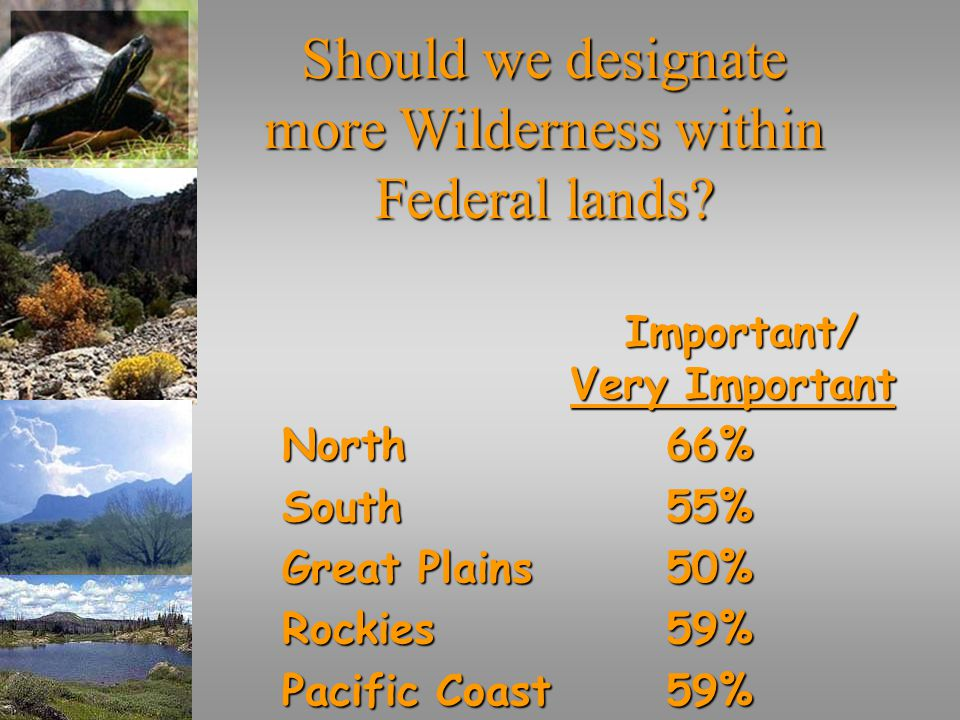 Should we designate more Wilderness within Federal lands.