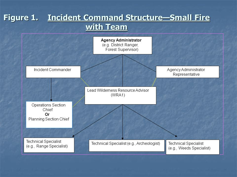 Figure 1. Incident Command Structure—Small Fire with Team Agency Administrator (e.g.