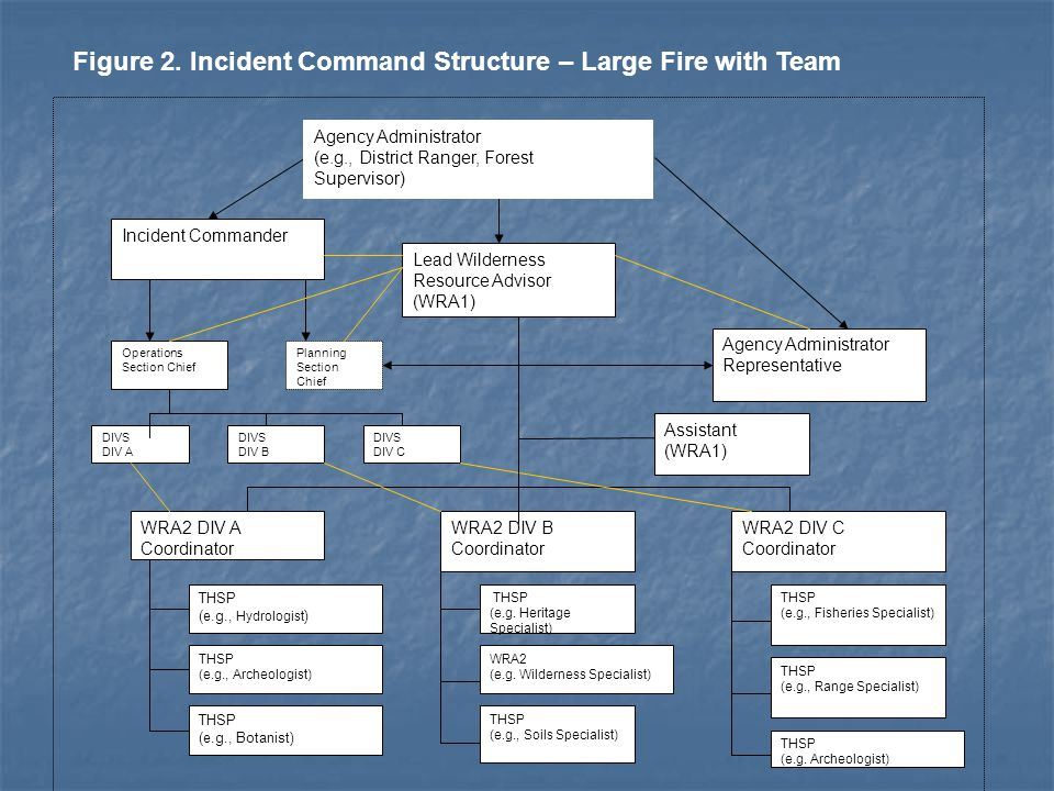 Figure 2. Incident Command Structure – Large Fire with Team Incident Commander Lead Wilderness Resource Advisor (WRA1) Agency Administrator Representa
