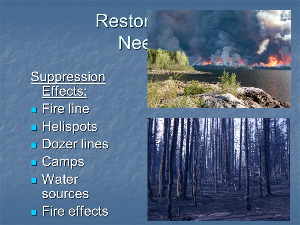 Restoration Needs Suppression Effects: Fire line Fire line Helispots Helispots Dozer lines Dozer lines Camps Camps Water sources Water sources Fire effects Fire effects