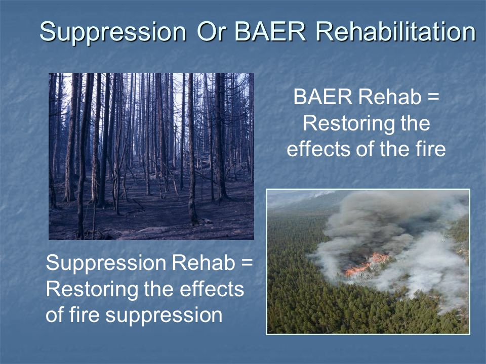 BAER Rehab = Restoring the effects of the fire Suppression Or BAER Rehabilitation Suppression Rehab = Restoring the effects of fire suppression
