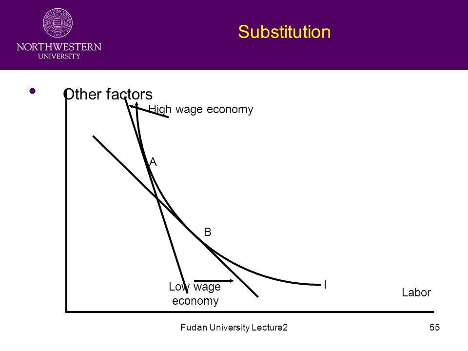 Fudan University Lecture255 Substitution Other factors Labor High wage economy Low wage economy A B I