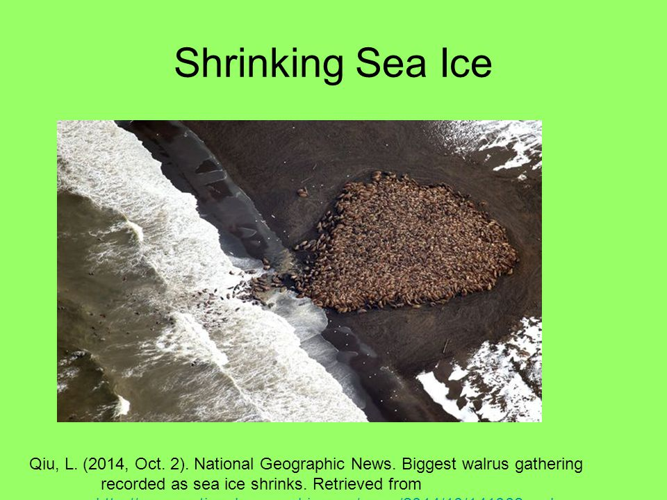 Shrinking Sea Ice Qiu, L. (2014, Oct. 2). National Geographic News.