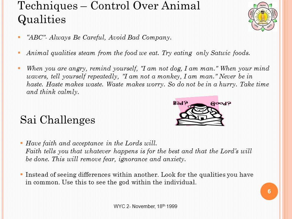 "WYC 2- November, 18 th 1999 Techniques – Control Over Animal Qualities  ""ABC""- Always Be Careful, Avoid Bad Company.  Animal qualities steam from th"