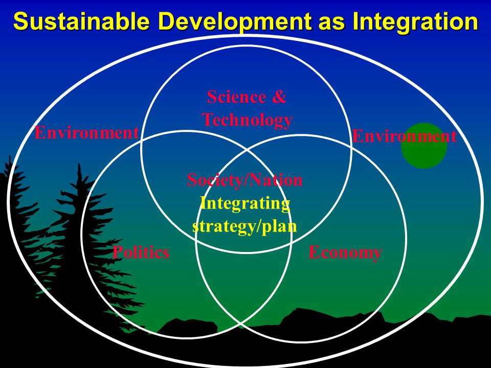 An International Framework l Creating conventions and protocols to govern the international commons l Establishing principles and practices of sustainable development for implementation at national and local levels