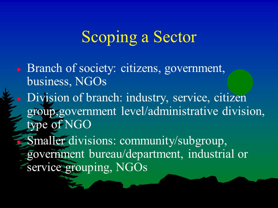 Scoping a Sector l Branch of society: citizens, government, business, NGOs l Division of branch: industry, service, citizen group,government level/administrative division, type of NGO l Smaller divisions: community/subgroup, government bureau/department, industrial or service grouping, NGOs