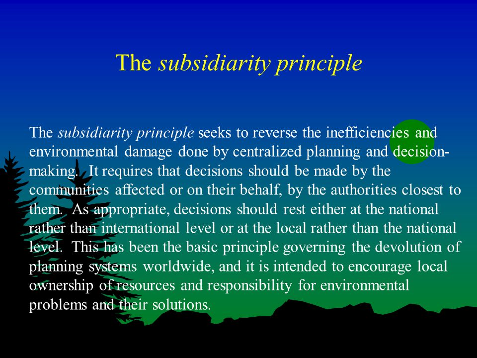 The subsidiarity principle The subsidiarity principle seeks to reverse the inefficiencies and environmental damage done by centralized planning and decision- making.