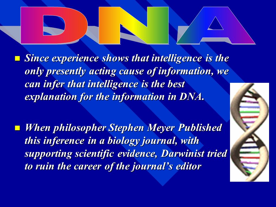 C. Evidence from DNA C. Evidence from DNA –1. Each individual organism has its own specific DNA structure (DNA fingerprint) –2. The closer the structu