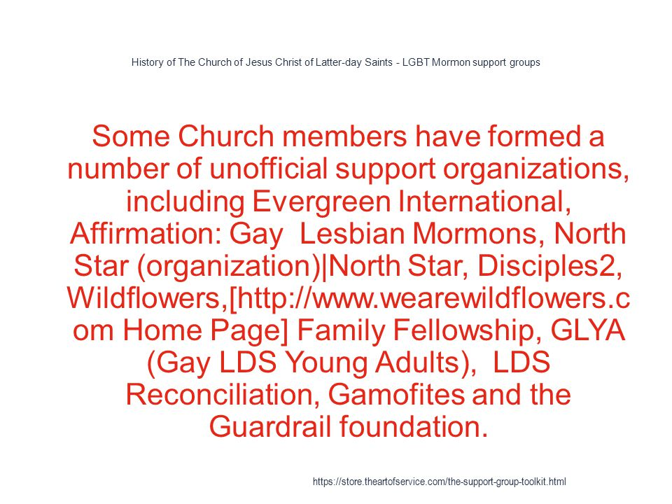 History of The Church of Jesus Christ of Latter-day Saints - LGBT Mormon support groups 1 Some Church members have formed a number of unofficial support organizations, including Evergreen International, Affirmation: Gay Lesbian Mormons, North Star (organization)|North Star, Disciples2, Wildflowers,[http://www.wearewildflowers.c om Home Page] Family Fellowship, GLYA (Gay LDS Young Adults), LDS Reconciliation, Gamofites and the Guardrail foundation.