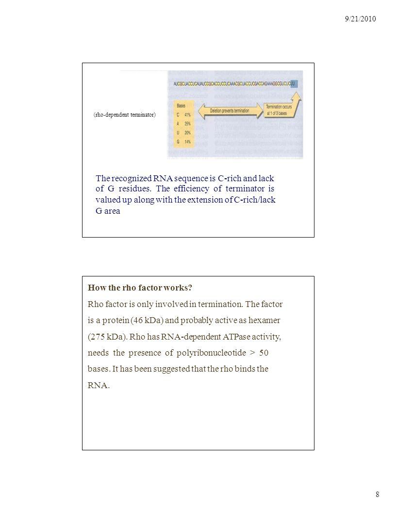 9/21/2010 9 The Modification of rRNA Post--Transcription In E.