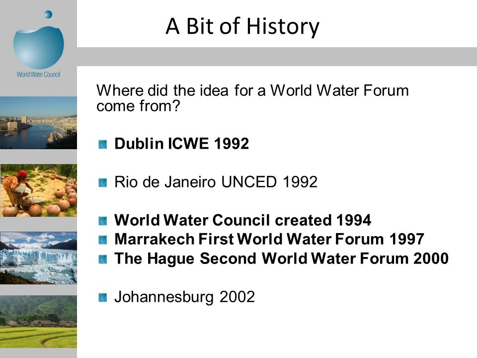 A Bit of History Where did the idea for a World Water Forum come from.