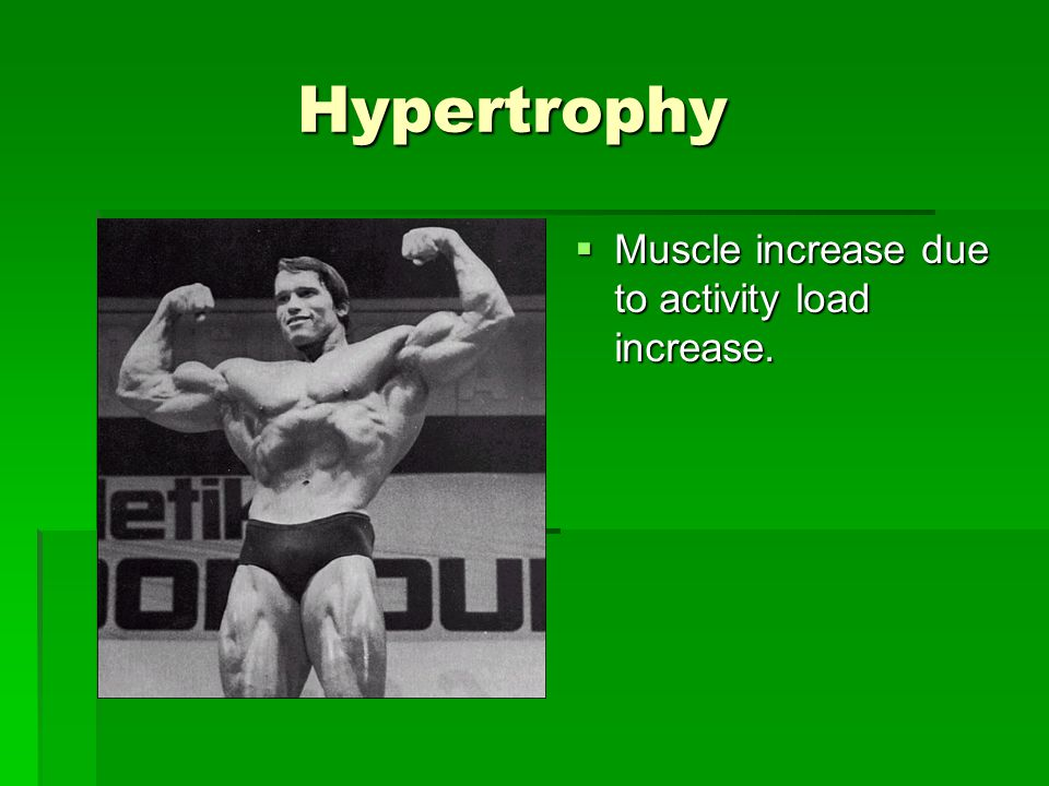 Hypertrophy Hypertrophy  Muscle increase due to activity load increase.