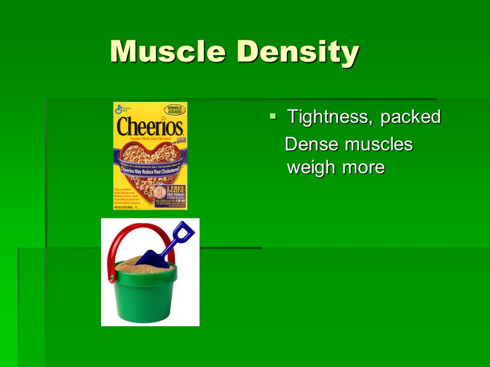 Muscle Density Muscle Density  Tightness, packed Dense muscles weigh more Dense muscles weigh more