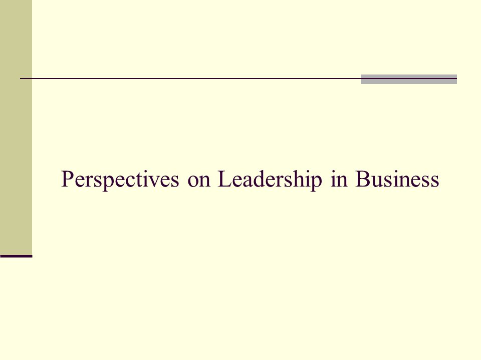 Perspectives on Leadership in Business