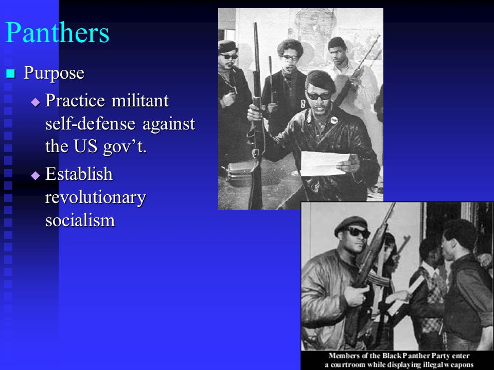 Panthers Purpose Purpose  Practice militant self-defense against the US gov't.  Establish revolutionary socialism