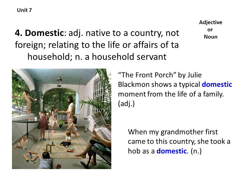 4. Domestic: adj.