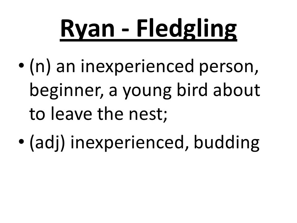 Ryan - Fledgling (n) an inexperienced person, beginner, a young bird about to leave the nest; (adj) inexperienced, budding