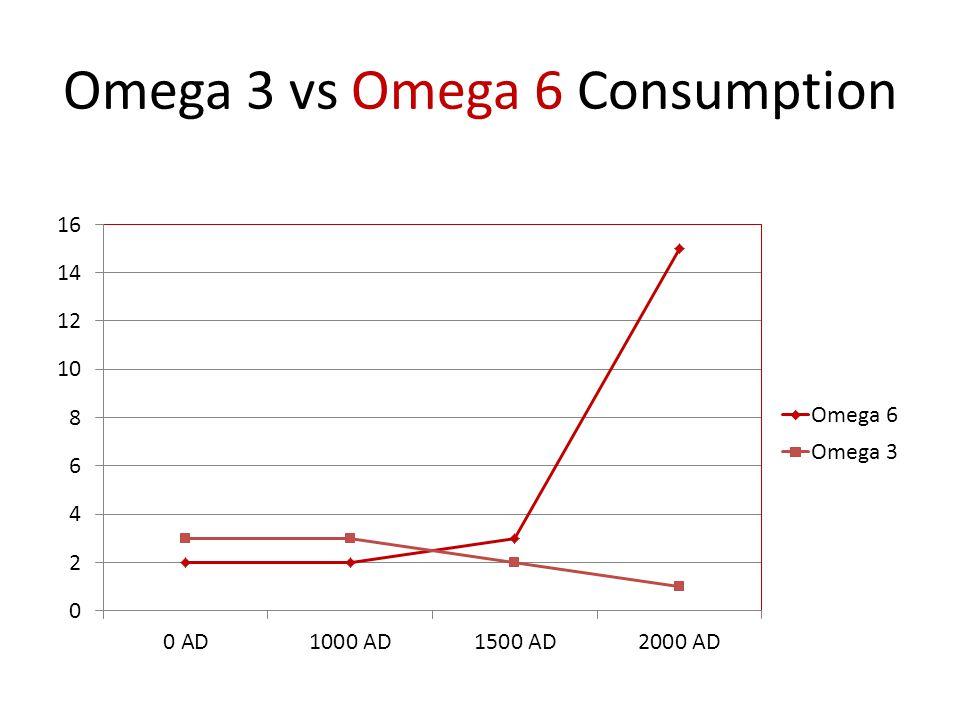 Omega 3 vs Omega 6 Consumption