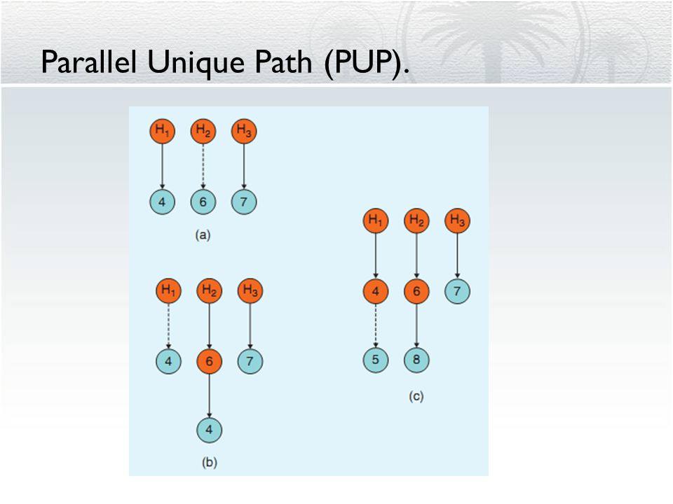 Parallel Unique Path (PUP).