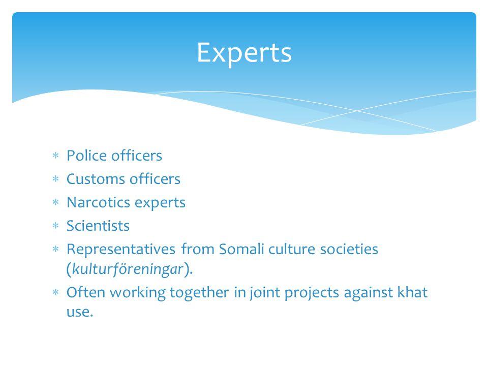  Police officers  Customs officers  Narcotics experts  Scientists  Representatives from Somali culture societies (kulturföreningar).
