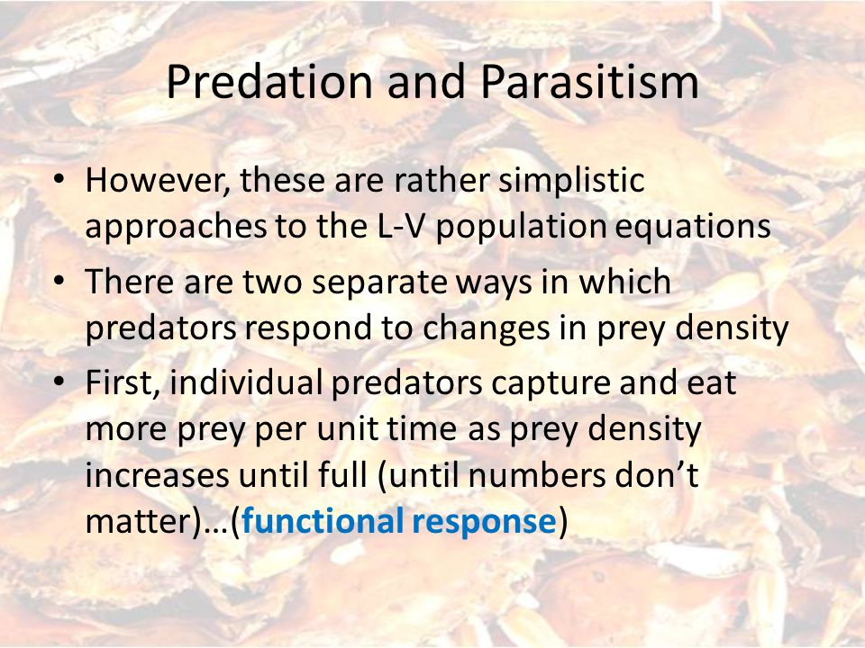 Predation and Parasitism However, these are rather simplistic approaches to the L-V population equations There are two separate ways in which predators respond to changes in prey density First, individual predators capture and eat more prey per unit time as prey density increases until full (until numbers don't matter)…(functional response)