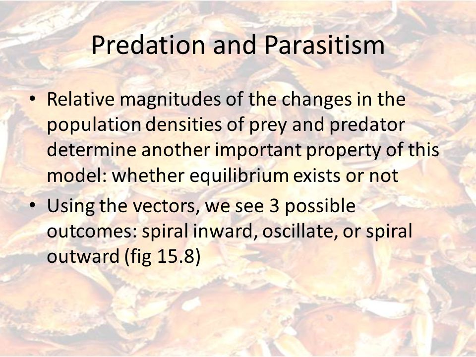 Relative magnitudes of the changes in the population densities of prey and predator determine another important property of this model: whether equilibrium exists or not Using the vectors, we see 3 possible outcomes: spiral inward, oscillate, or spiral outward (fig 15.8)