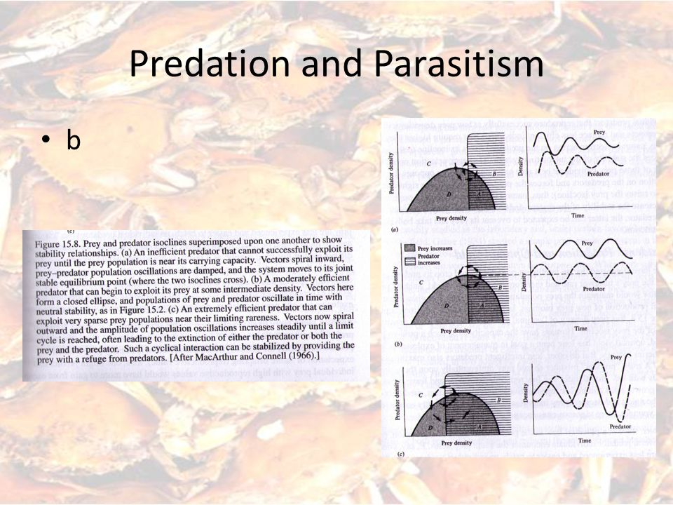 Predation and Parasitism b