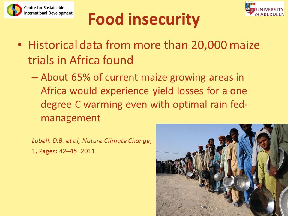 Food insecurity Historical data from more than 20,000 maize trials in Africa found – About 65% of current maize growing areas in Africa would experien