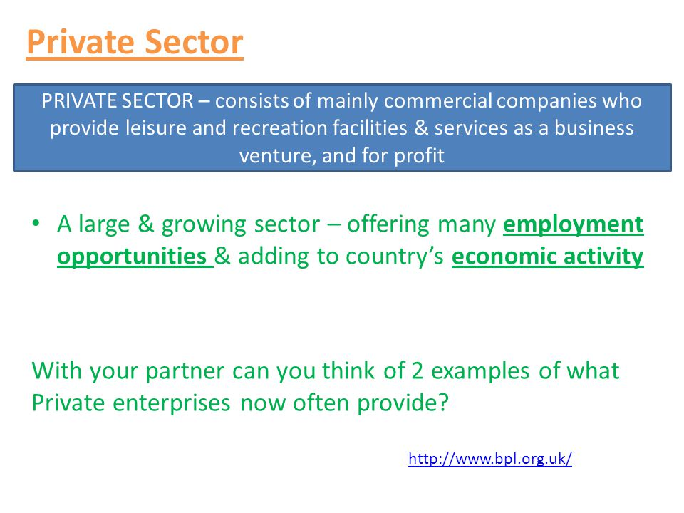 Private Sector A large & growing sector – offering many employment opportunities & adding to country's economic activity With your partner can you thi