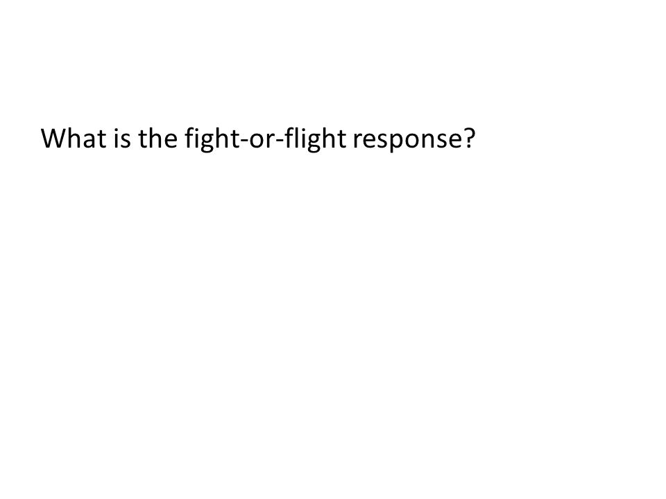 What is the fight-or-flight response?
