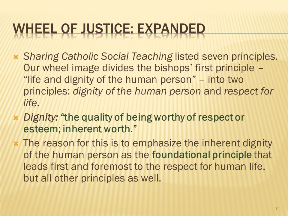 """ Sharing Catholic Social Teaching listed seven principles. Our wheel image divides the bishops' first principle – """"life and dignity of the human pers"""