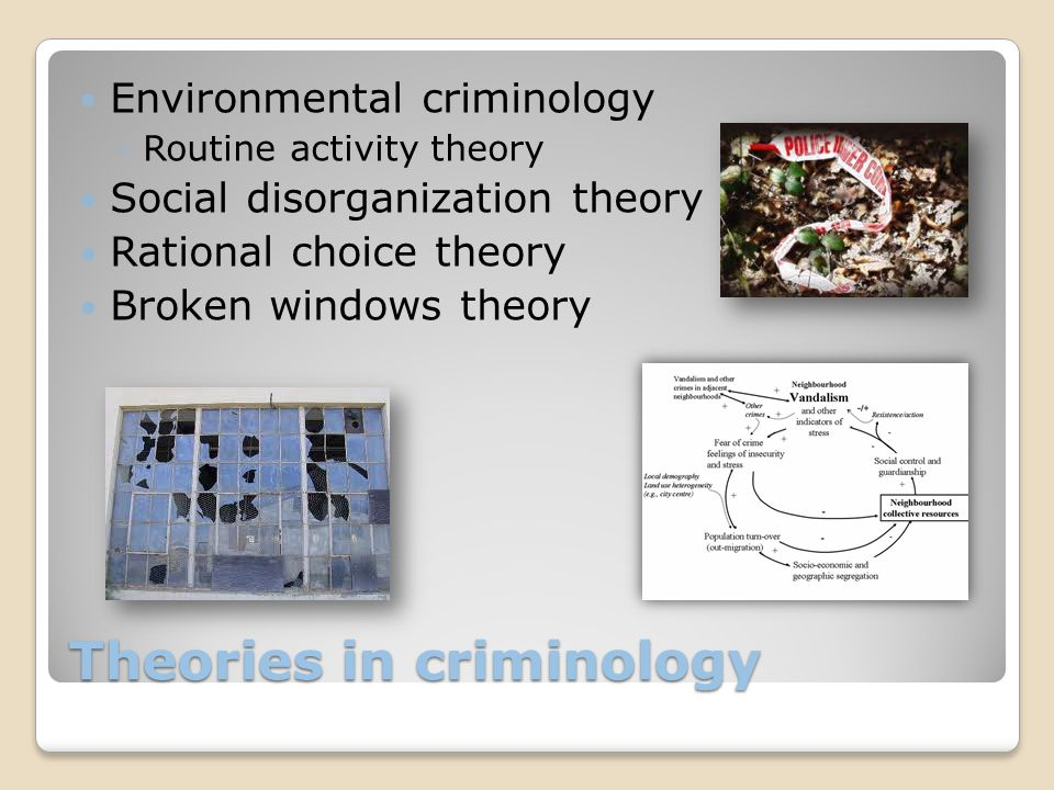 Theories in criminology Environmental criminology ◦Routine activity theory Social disorganization theory Rational choice theory Broken windows theory