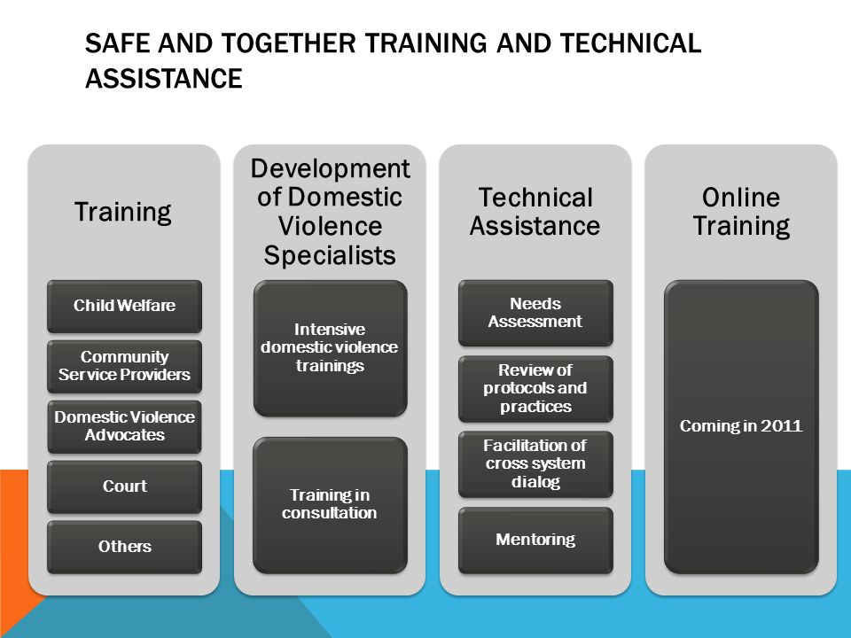 SAFE AND TOGETHER TRAINING AND TECHNICAL ASSISTANCE Training Child Welfare Community Service Providers Domestic Violence Advocates CourtOthers Development of Domestic Violence Specialists Intensive domestic violence trainings Training in consultation Technical Assistance Needs Assessment Review of protocols and practices Facilitation of cross system dialog Mentoring Online Training Coming in 2011