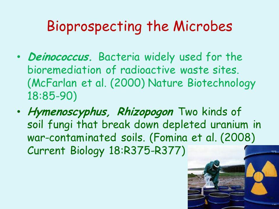 Bioprospecting the Microbes Deinococcus.