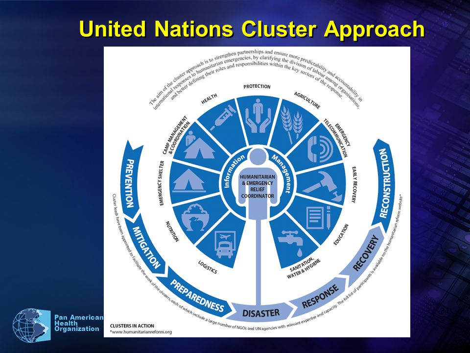 15 Pan American Health Organization United Nations Cluster Approach
