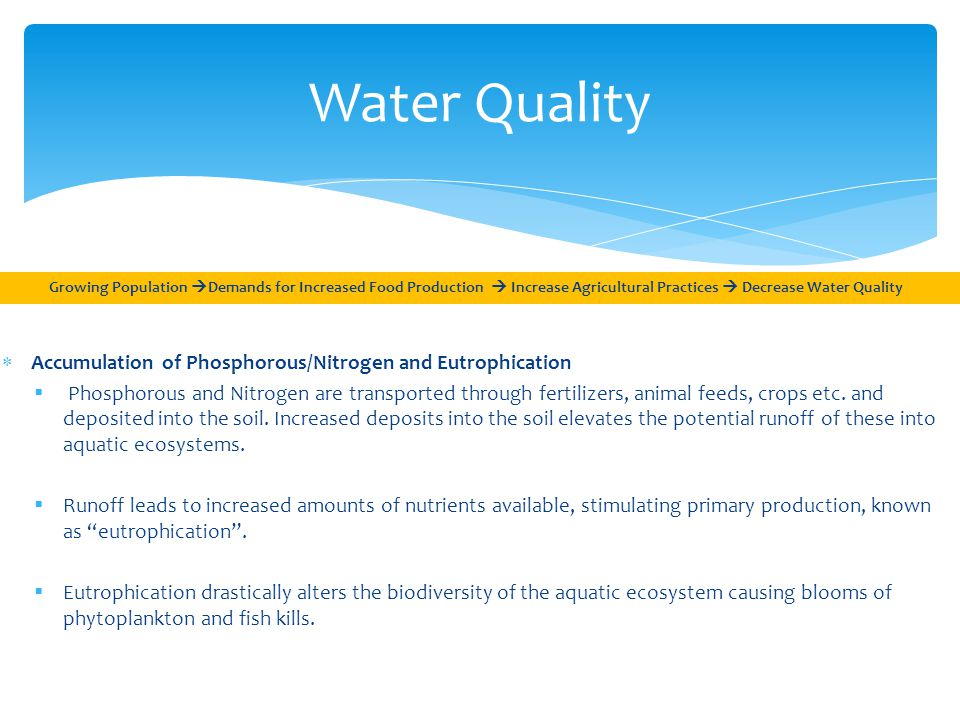 Water Quality Growing Population  Demands for Increased Food Production  Increase Agricultural Practices  Decrease Water Quality  Accumulation of Phosphorous/Nitrogen and Eutrophication  Phosphorous and Nitrogen are transported through fertilizers, animal feeds, crops etc.